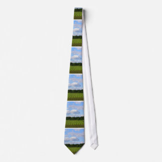 Farm field striped land farmer harvesting photo neck tie
