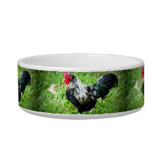 Farm Fowl Cat Bowl