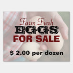 Farm Fresh Eggs For Sale 2 Signs