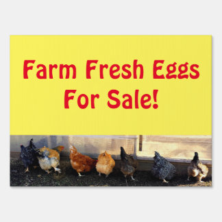 Farm Fresh Eggs For Sale! Yard Sign