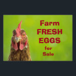 "Farm Fresh Eggs for Sale Yard Sign<br><div class=""desc"">Portrait photography of a chicken on a bokeh green background with the text Farm Fresh Eggs for Sale. You can change the text if you want and you can also change the font and the color of the text by customizing the product.</div>"