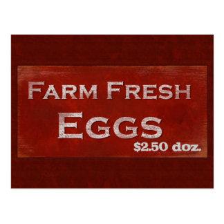 Farm Fresh Eggs Postcard