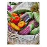 Farm - Fresh Vegetables Postcard