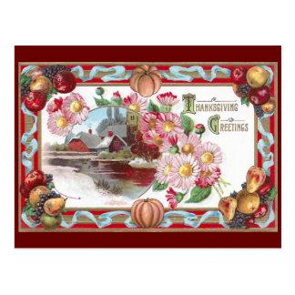 Farm, Fruit and Pink Mums Thanksgiving Postcard