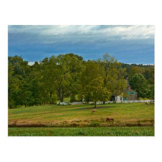 Farm - Gettysburg National Park - Pennsylvania Postcard
