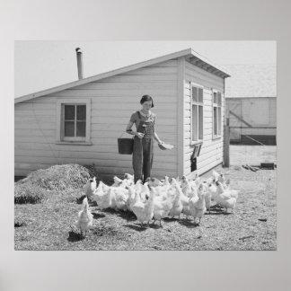 Farm Girl Feeding Chickens, 1936. Vintage Photo Poster