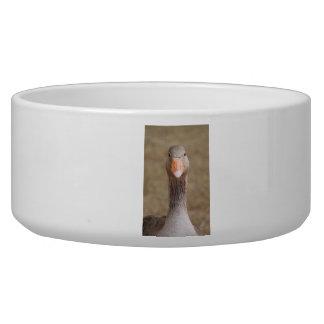 Farm Goose Bowl