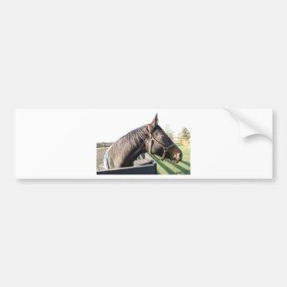 Farm Horse Bumper Stickers