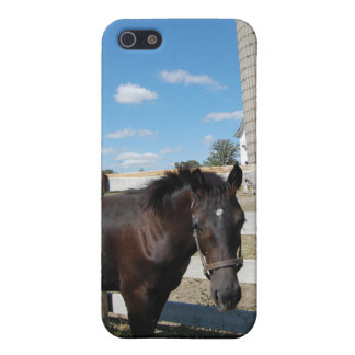 Farm Horse iPhone 5 Covers