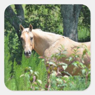 Farm Horse square sticker