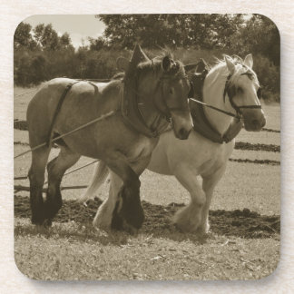 Farm horse team coaster