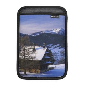 Farm house and Mount Rigi and Pilatus, iPad Mini Sleeves