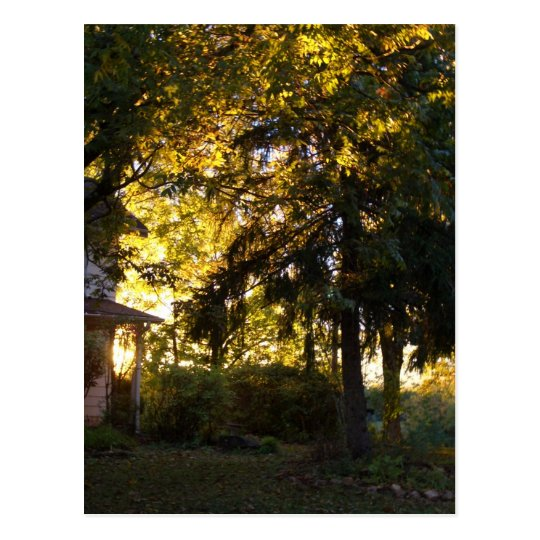 Farm House - CricketDiane Country Living Stuff Postcard