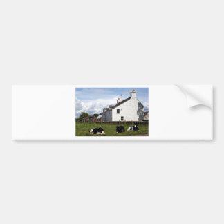 Farm house with cows, Scotland, United Kingdom Car Bumper Sticker