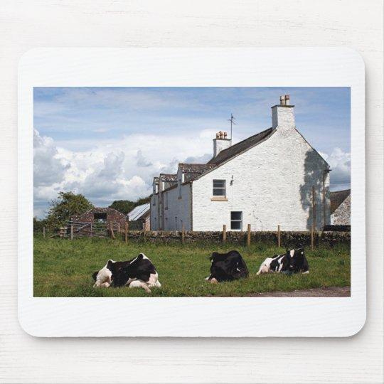 Farm house with cows, Scotland, United Kingdom Mouse Pad