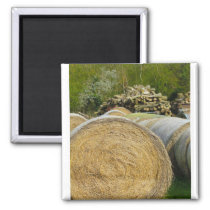 Farm Image with Hay Barrels and Oak Wood Logs Magnet