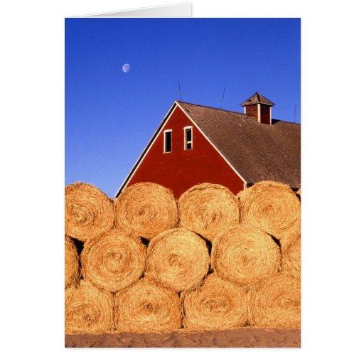 Farm in Iowa Greeting Card