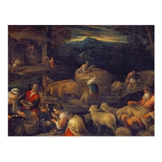 Farm Interior or Shearing Sheep Postcard