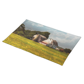 Farm - Ohio - Broken dreams Placemat