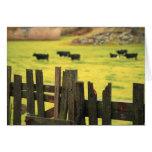 Farm scene card