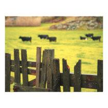 Farm scene flyer