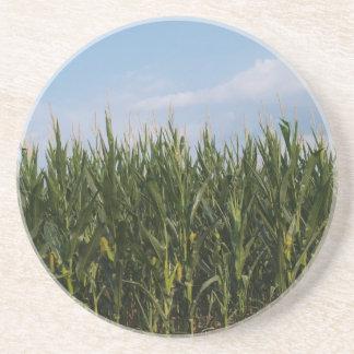 Farm Series---Corn field in GA Sandstone Coaster