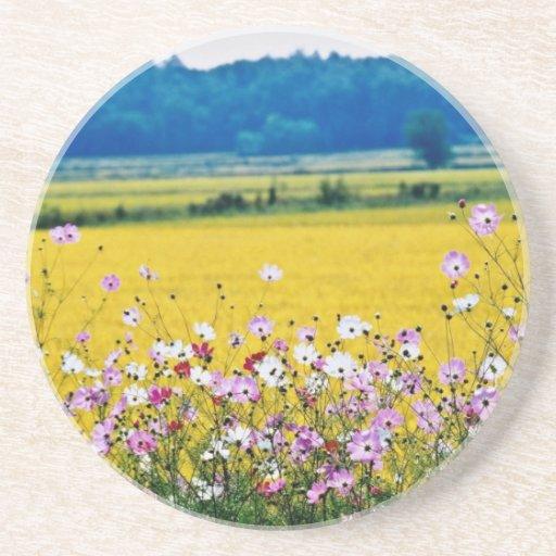 Farm village, fall  flowers drink coaster