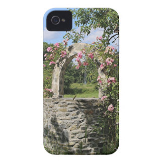 Farm wishing well and roses, Spain iPhone 4 Case-Mate Case