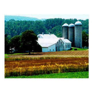 Farm with White Silos Postcard