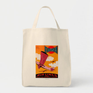 Farman Brothers Airlines F-170 Monoplane Poster Tote Bag