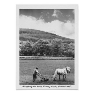 Farmer & horse plough, 1960's Ireland, Co. Meath Poster