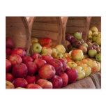 Farmer Market's Apples Post Card