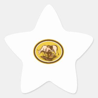 Farmer Milking Cow Oval Woodcut Star Sticker