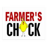 Farmer's Chick Postcard