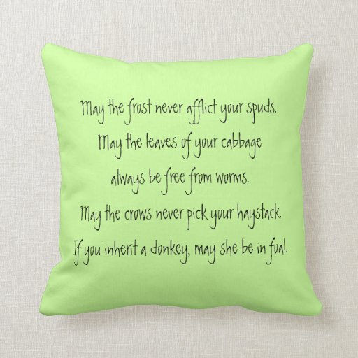 farmers irish blessing pillow