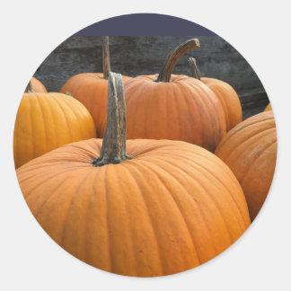 Farmer's Market, Autumn Harvest Pumpkins Classic Round Sticker