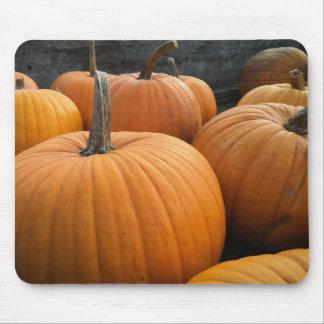 Farmer's Market, Autumn Harvest Pumpkins Mouse Pad
