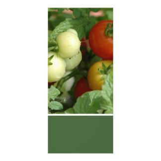 Farmers Market Customized Rack Card