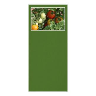 Farmers Market Rack Card Design