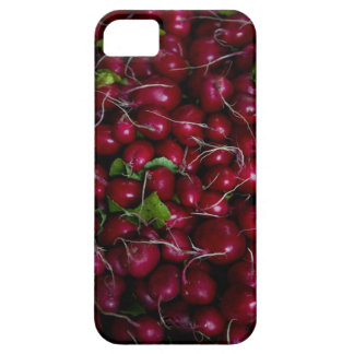 farmers market stand with various produce/ iPhone SE/5/5s case