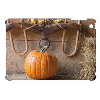 Farmers Museum. Pumpkin in barn with bale of hay iPad Mini Covers