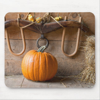 Farmers Museum. Pumpkin in barn with bale of hay Mouse Pad