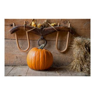 Farmers Museum. Pumpkin in barn with bale of hay Poster