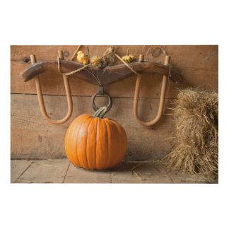 Farmers Museum. Pumpkin in barn with bale of hay Wood Print
