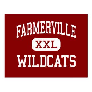 Farmerville - gatos monteses - centro - postales