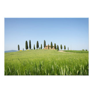 Farmhouse in Tuscany with cypresses print