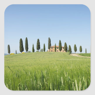 Farmhouse in Tuscany with cypresses sticker