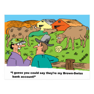 FARMING CARTOON HUMOR ABOUT BROWN SWISS CATTLE POSTCARD