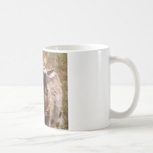Farming goats mugs