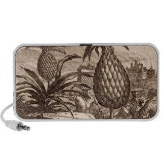 Farming Large Pineapples, illustration from a desc iPod Speaker